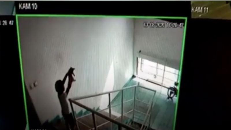 ВИДЕО(18+): Шестилетний мальчик сбросил котенка с шестого этажа в Нур-Султане