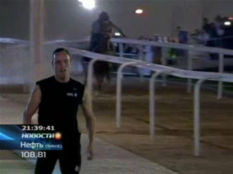 Безногий бегун обогнал арабского скакуна