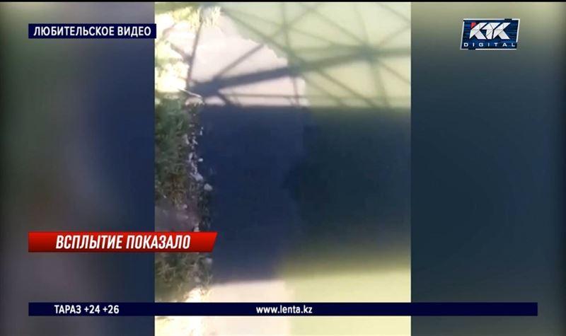 Уральцы обвиняют водоканал в загрязнении реки