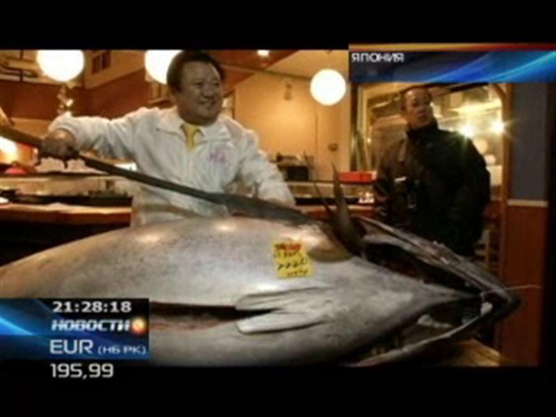 За миллион 700 тысяч долларов продали гигантского тунца в Японии