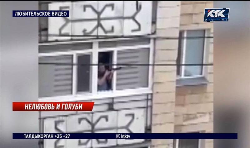 Житель Кокшетау обстрелял чаек с балкона и заплатил 55 500