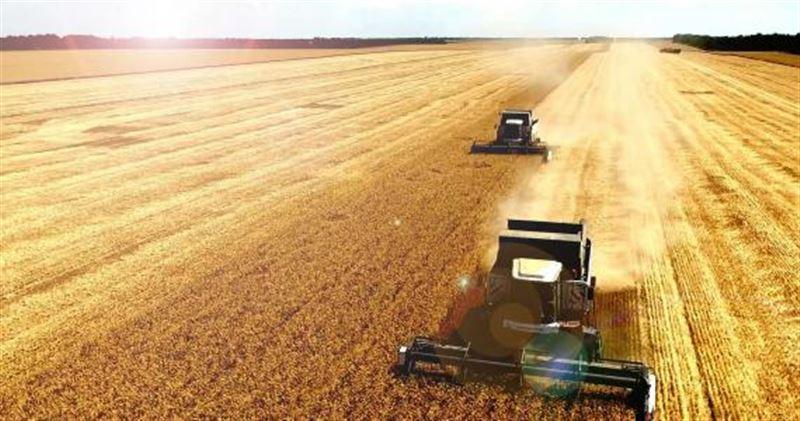 Подходит к концу сбор урожая в Акмолинской области