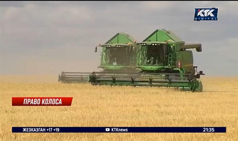 Китай получил больше казахстанского зерна