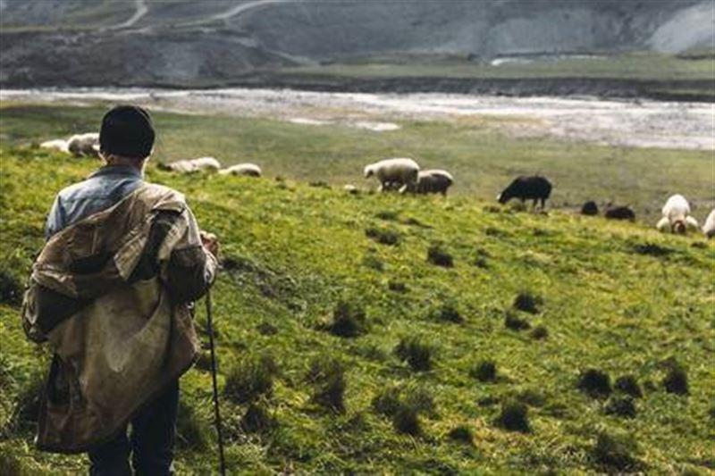 Атырауские полицейские вернули домой мужчину, заблудившегося при поиске скота