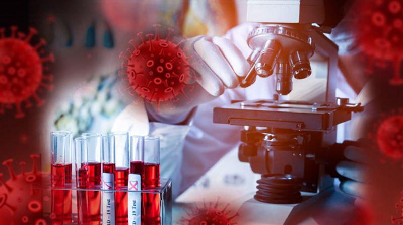 Коронавирус способен вызвать смертельную болезнь – ученые
