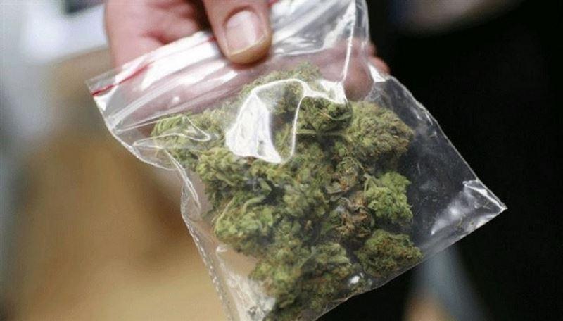 Полиция конфисковала 160 кг марихуаны и 159 кг из них продала