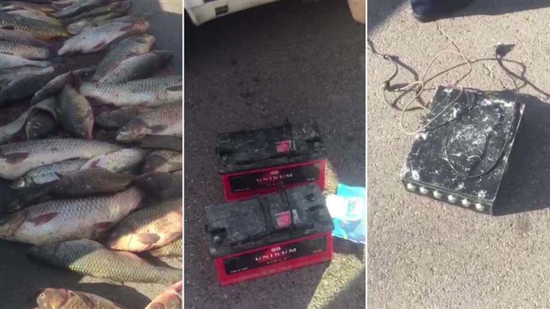 115 кг рыбы изъяли у браконьера в Алматинской области