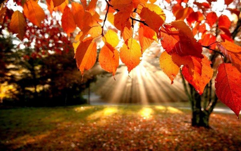 Какая погода ожидает казахстанцев в октябре