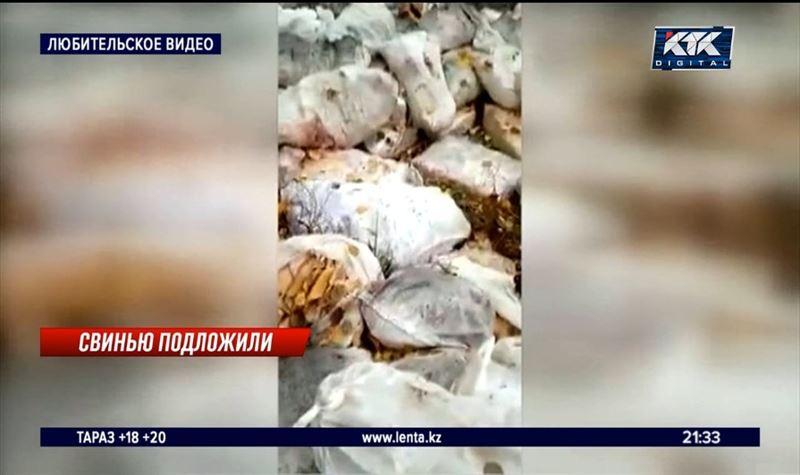 В СКО на опушку леса выкинули около 60 мешков свинины