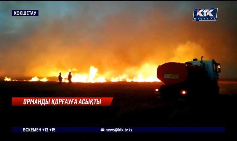 Темекі тұқылынан 70 гектар жер күлге айналды – Ақмола облысы
