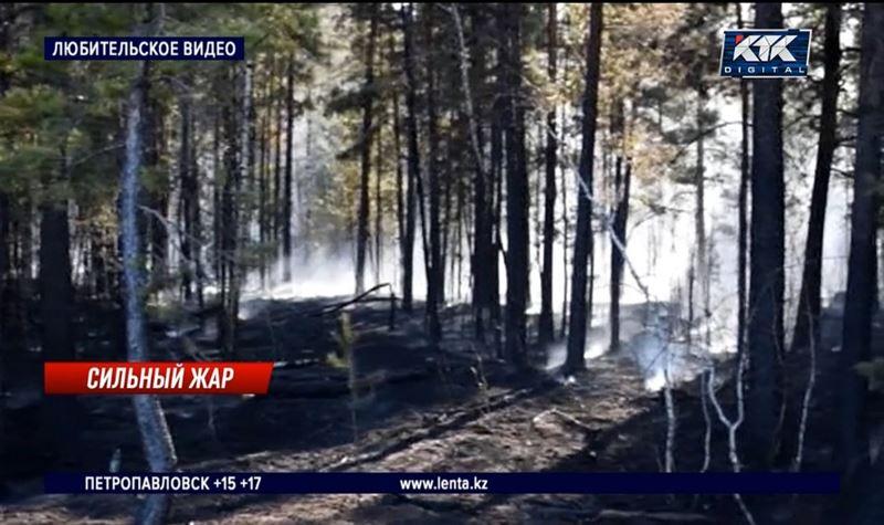 Пожар в нацпарке стал 17-м за выходные в Акмолинской области
