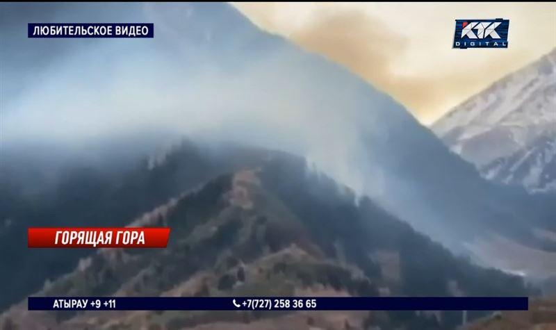 Пожар уничтожил редчайшие деревья в Алма-Арасанском ущелье