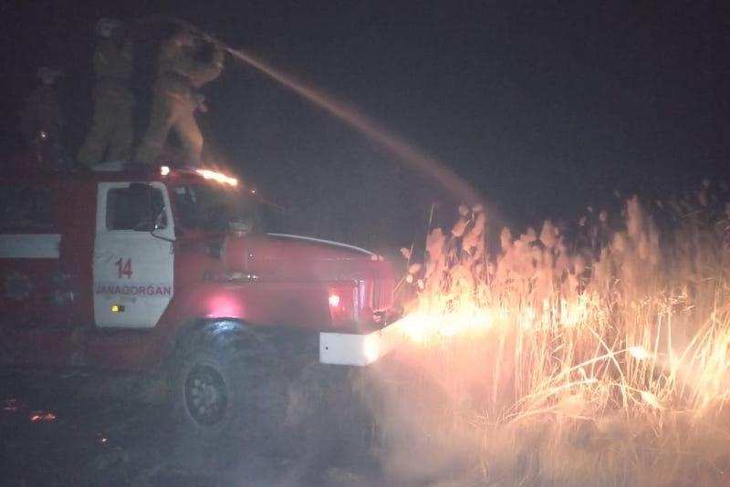 Қызылорда облысында 700-ге жуық қой өртеніп кетті