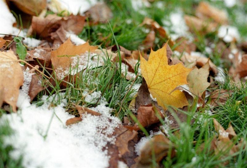 Дождь со снегом ожидается в Казахстане в ближайшие три дня