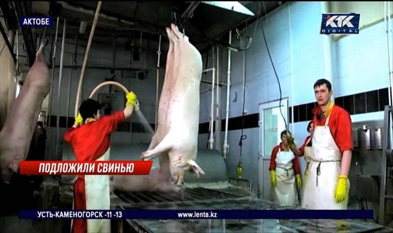 После разразившегося скандала работу свинофермы приостановили