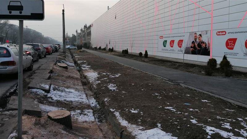 Сагинтаев будет лично контролировать вырубку деревьев в Алматы