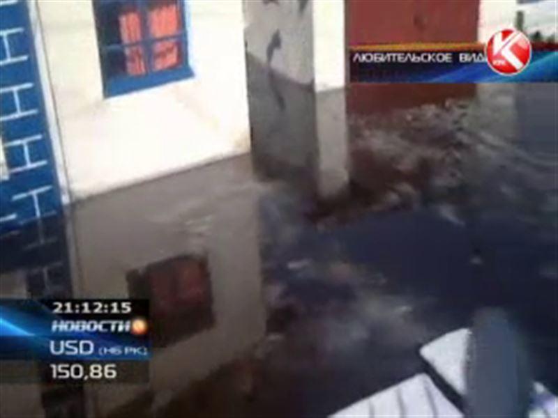 В селе Улкен Нарын ВКО талые воды подтопили дома