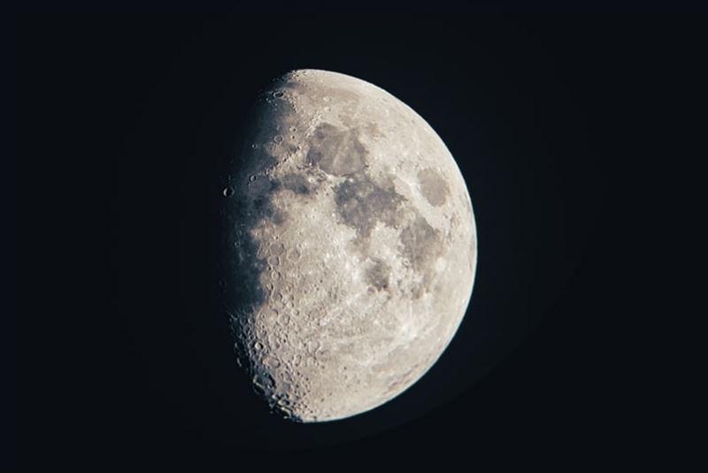 Первая женщина может быть отправлена на Луну в ближайшие 10 лет