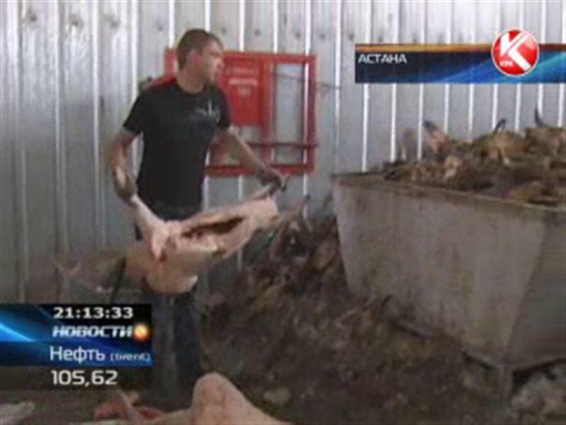 В Астане уничтожили почти тонну баранины