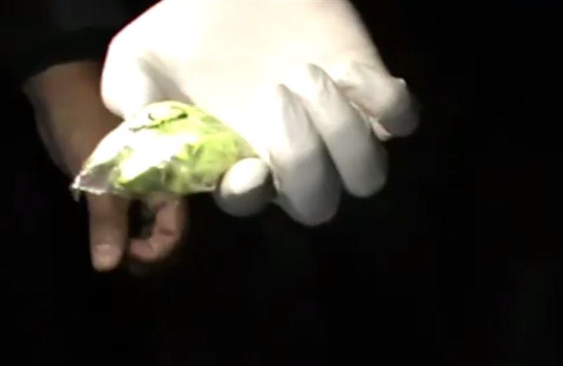 Студенты работали наркокурьерами в Шымкенте