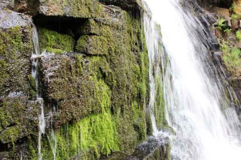 Отца и дочь едва не унесло течением у водопада в Акмолинской области