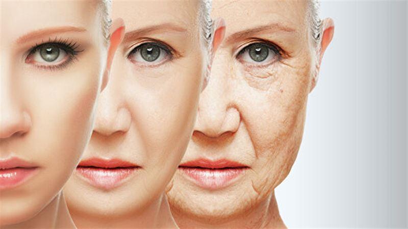 Ученые выявили три этапа старения человека