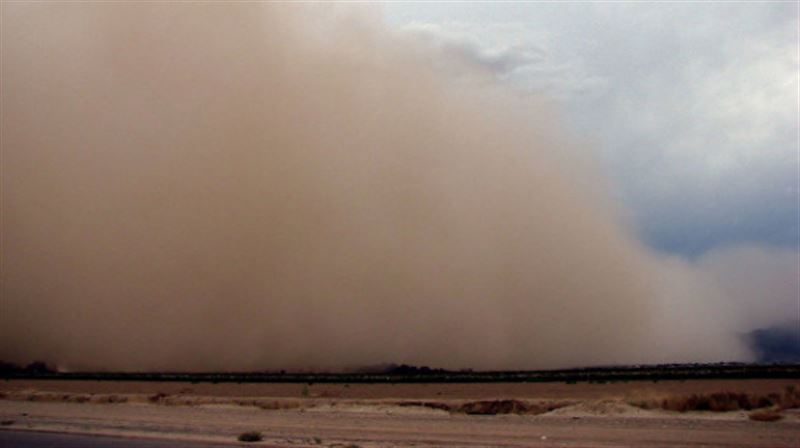 В Казахстане прогнозируют пыльную бурю и заморозки