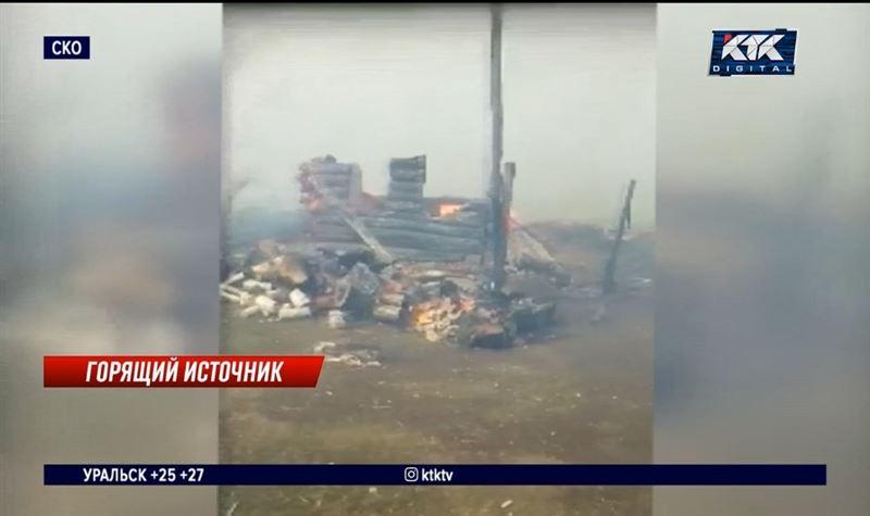 В селе СКО при пожаре погиб весь домашний скот