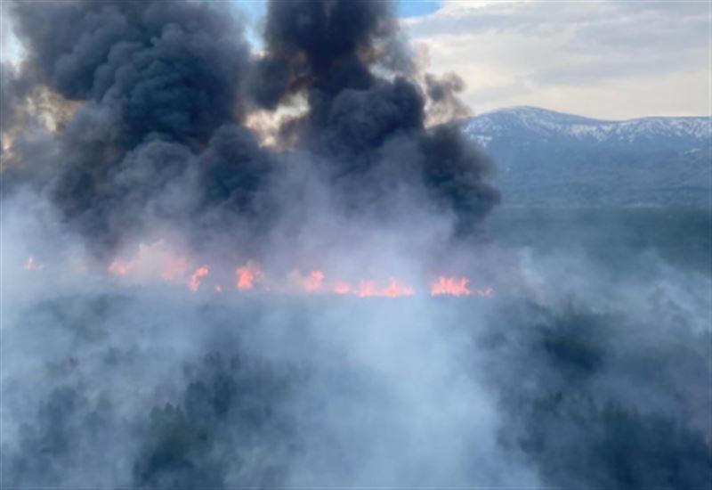 Лес горит неподалеку от Риддера