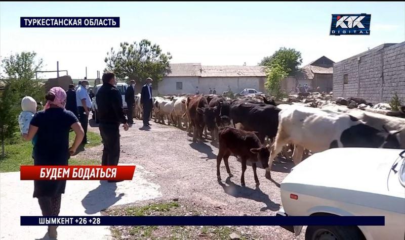 Жители четырех аулов пригнали скот к районному акимату