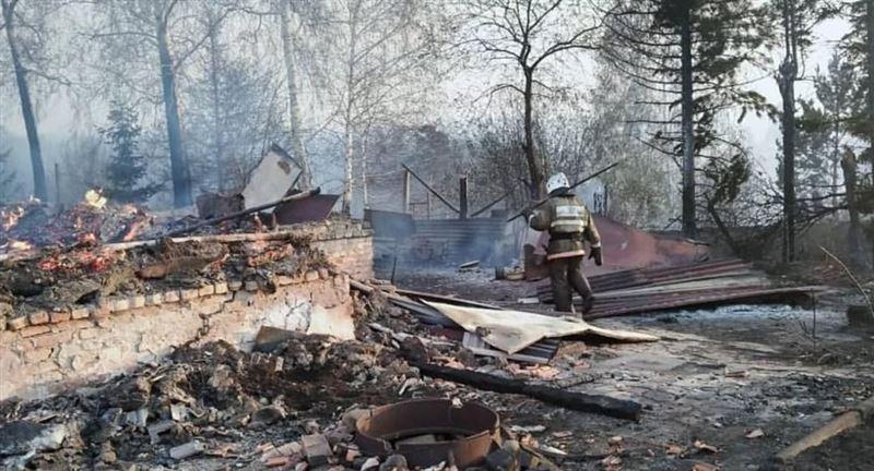 Лесной пожар в Риддере наконец потушен