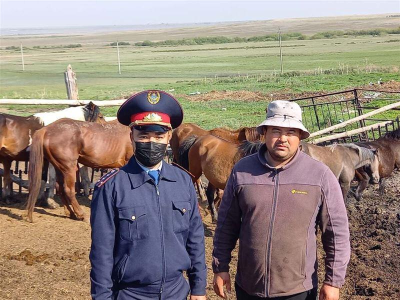 Мужчине вернули пропавших лошадей спустя полгода