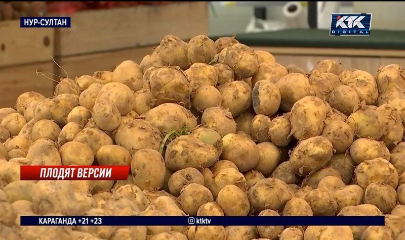 Свой продаем дешево, чужой покупаем дорого – министр о ценах на картофель