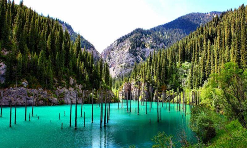 Иностранные инвесторы в сфере туризма в Казахстане будут освобождены от налогов