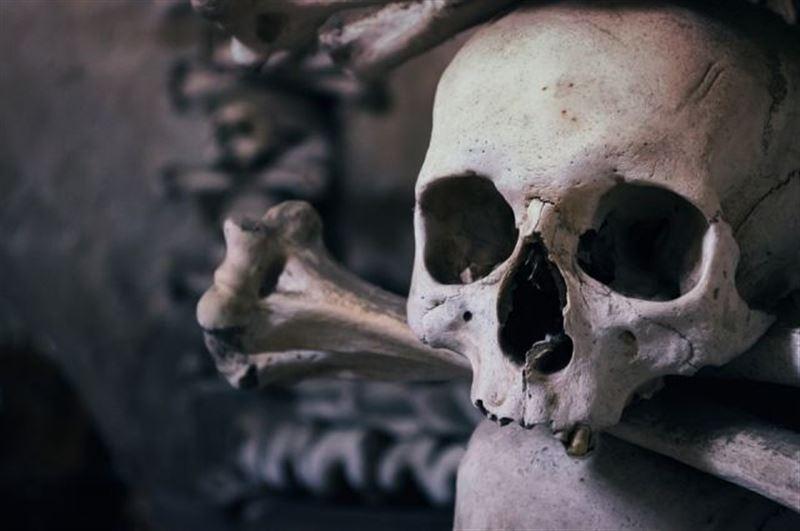 Мужчина нашел в снятом доме человеческую кость