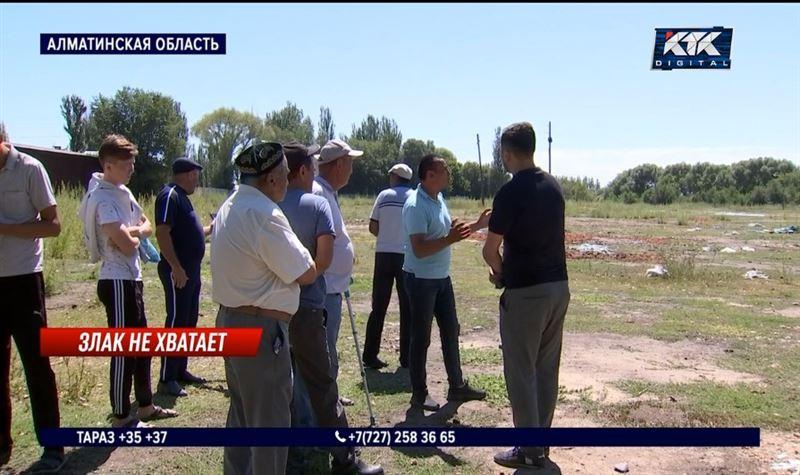 Перекупщик кукурузы обманул фермеров на 70 миллионов тенге