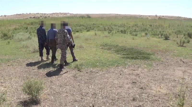 Марихуану стоимостью 60 млн тенге изъяли у казахстанца