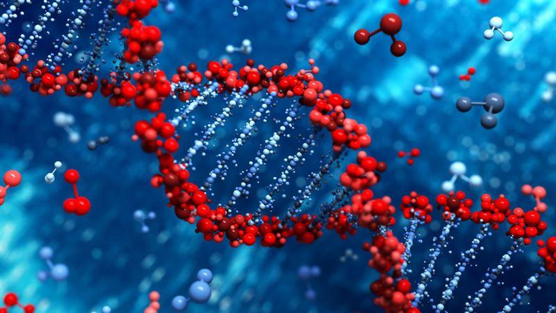 Способен ли ковид соединиться с ДНК человека