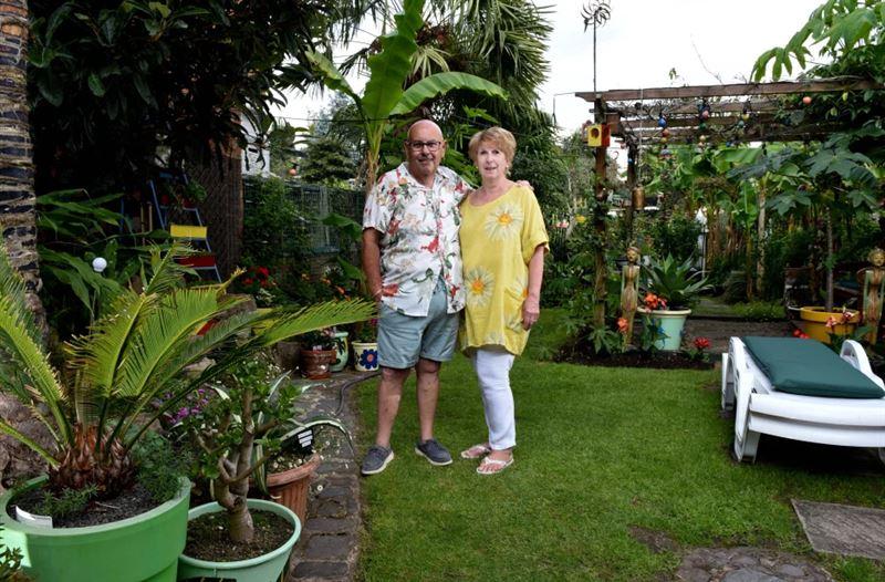 Британец создал дома настоящие джунгли