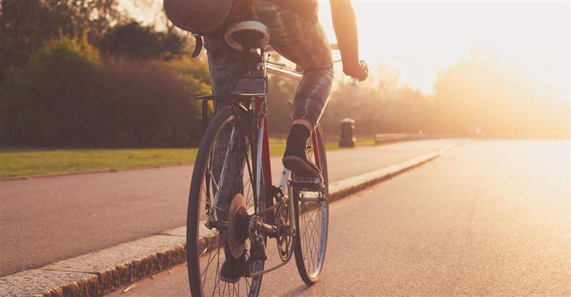 Велосипедист волочил за собой привязанную кошку