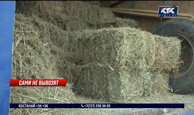 Казахстан вводит запрет на вывоз сена и других кормов за границу