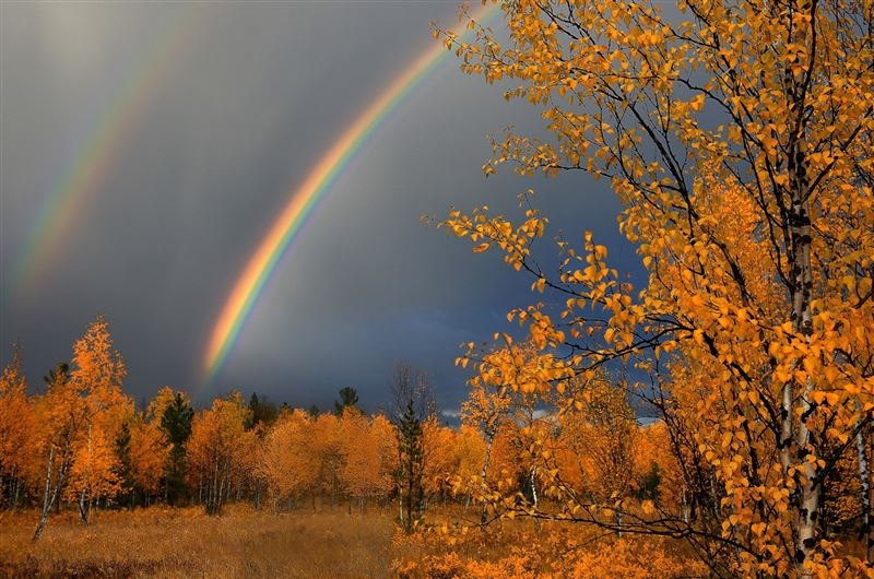 Синоптики представили прогноз погоды на 15 сентября