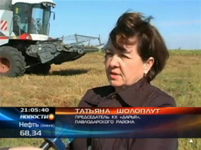 Павлодарские прокуроры обнаружили нарушения в распределении денег на посевную, cами же фермеры обвиняют во всём нерасторопных чиновников