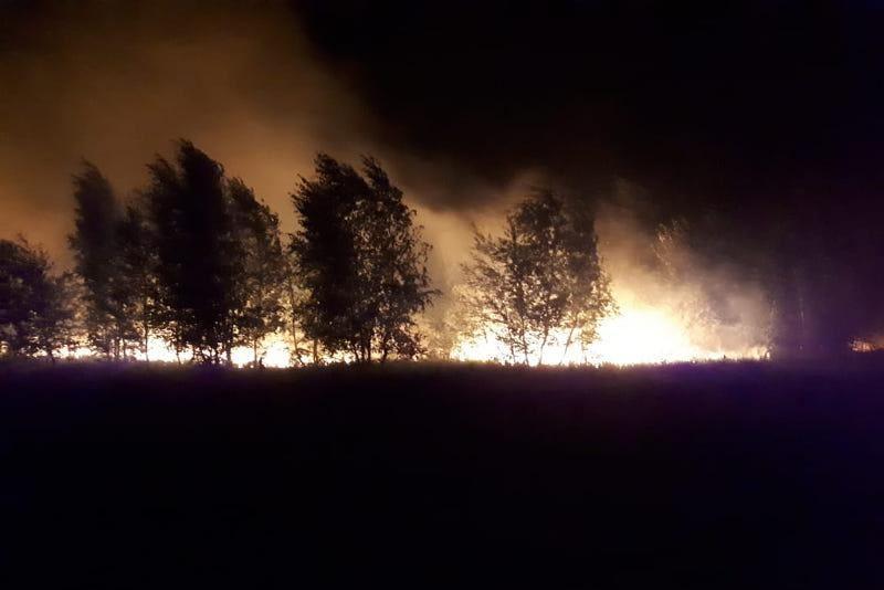 Около сотни человек тушили пожар площадью 200 га в Костанае