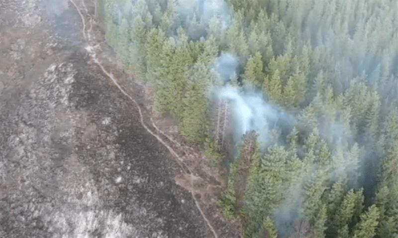 Крупный пожар в ущелье тушат в Алматинской области
