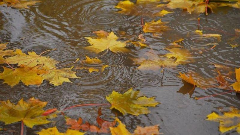 Синоптики представили прогноз погоды на 29 сентября