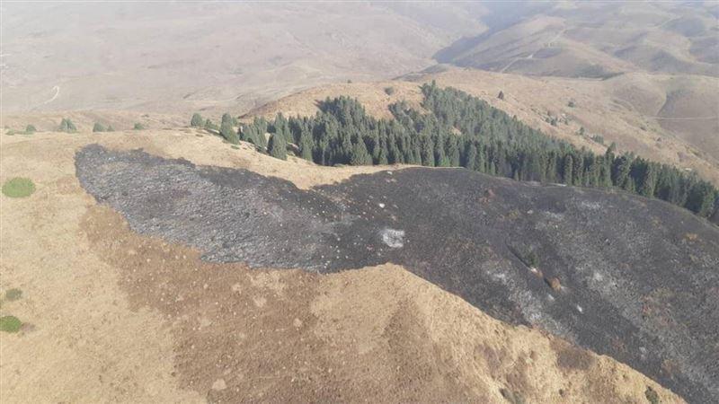 Пожар вспыхнул в Иле-Алатауском нацпарке