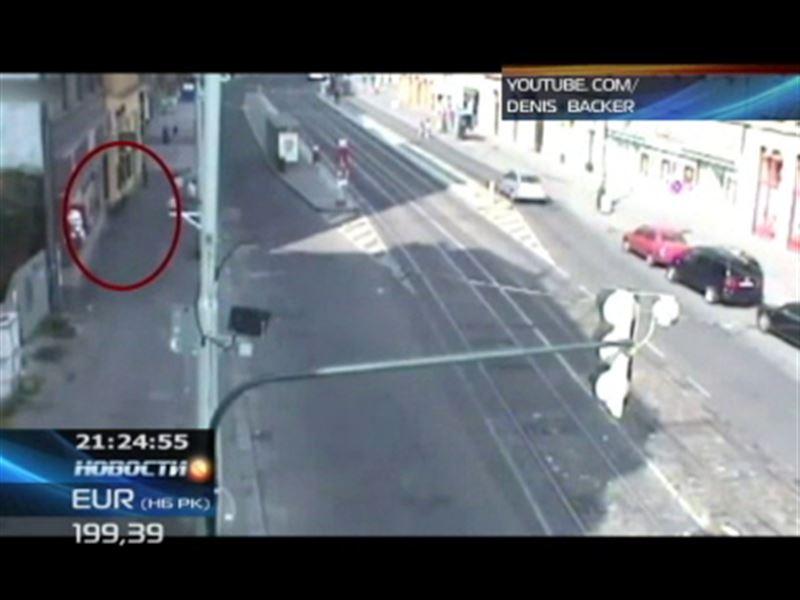 Дикий кабан устроил погром в самом центре Праги
