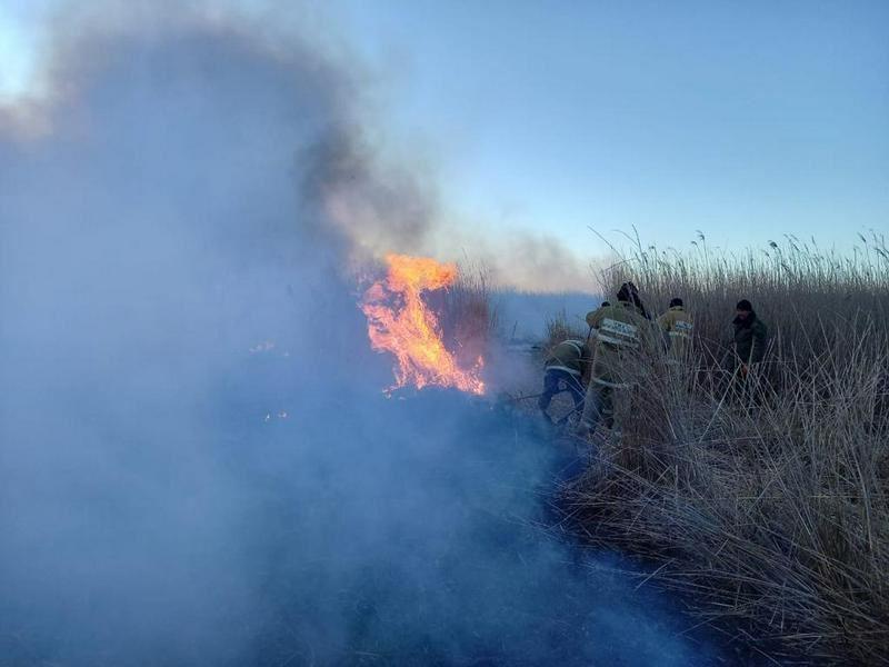 В Атырауской области продолжают тушить пожар на побережье Каспия