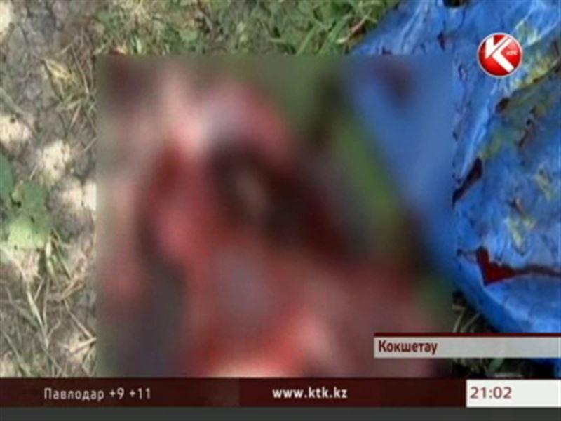 В Кокшетау женщина закопала собственного ребенка в огороде